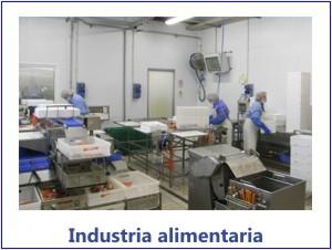 06-industria alimentaria